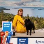 Helsinki Winner Zvezdny Volk 8.12.2017