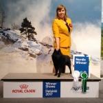 Nordic Winner Zvezdny Volk Jostler