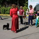 Taffin show Bobikova 1